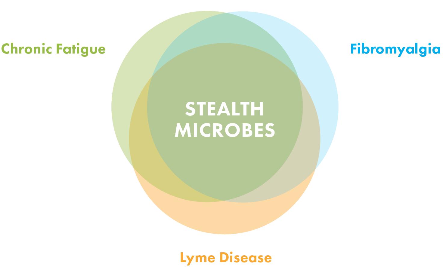 three overlapping circles, Lyme disease, fibromyalgia, chronic fatigue