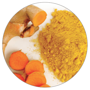 Joint Care ingredient BCM-95 Curcumin