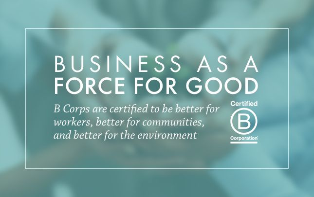 Inside Vital Plan: Joining the B Corp Movement