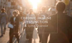 Chronic Immune Dysfunction and Lyme Disease
