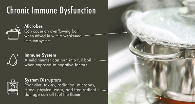 Boiling pot: when immune dysfunction leads to chronic disease