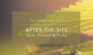 Lyme Disease Series Part 2: After the bite, Lyme disease and ticks