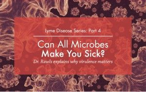 Can all microbes make you sick?