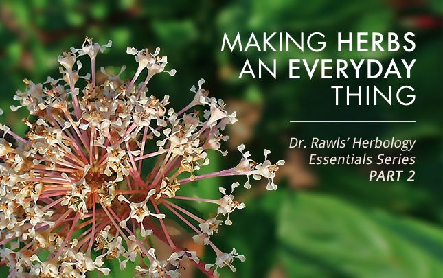 Making Herbs an Everyday Part of Your Life