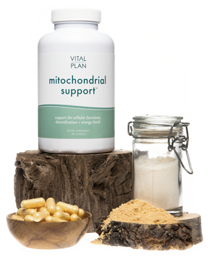 vital plan mitochondrial support supplement