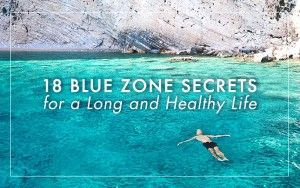 blue zone header 2