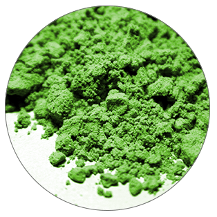 Chlorella nutrient Omega-3 fatty acids