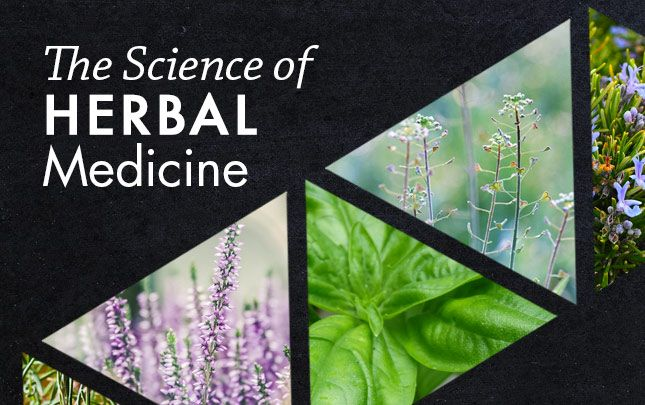The Science of Herbal Medicine