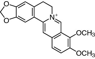 Berberine plant alkaloid