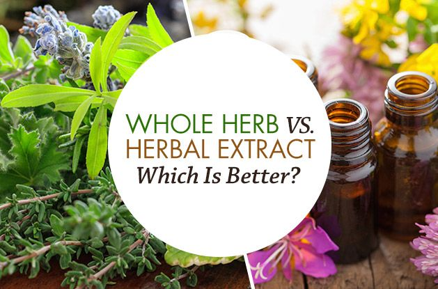 Whole Herb Vs. Herbal Extract: Which is Better?