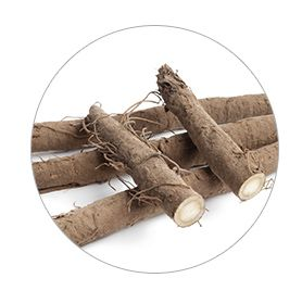 Revival Bitters ingredients_Burdock Root