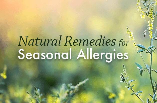 8 Natural Remedies for Seasonal Allergies | Vital Plan