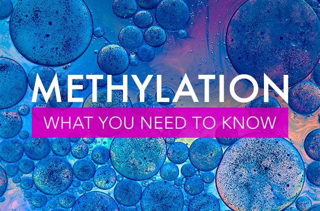 Methylation: What You Need to Know