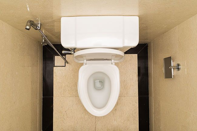 Is Your Poop Trying to Tell You Something? | Vital Plan