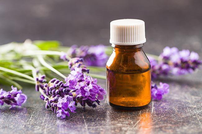 essential oil for headache relief, lavender oil