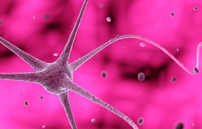 neuron cell in a pink background with bacteria around, 3D illustration