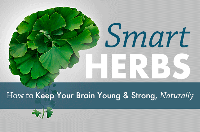 Smart Herbs: How to Keep Your Brain Young and Strong, Naturally