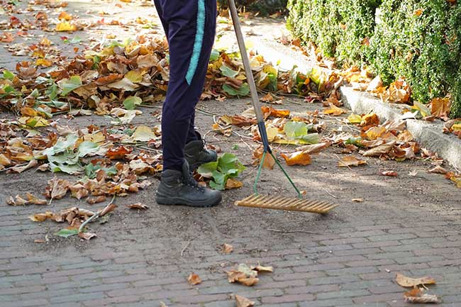 man raking leaves on the sidewalk. unconventional exercise as a productive activity.