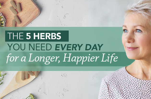 The 5 Herbs You Need Every Day for a Longer, Happier Life | Vital Plan