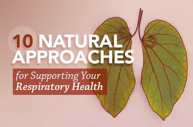 10 Natural Approaches for Supporting Your Respiratory Health