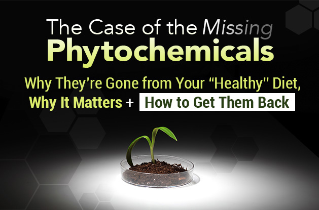The Case of the Missing Phytochemicals and How to Get Them Back | Vital Plan