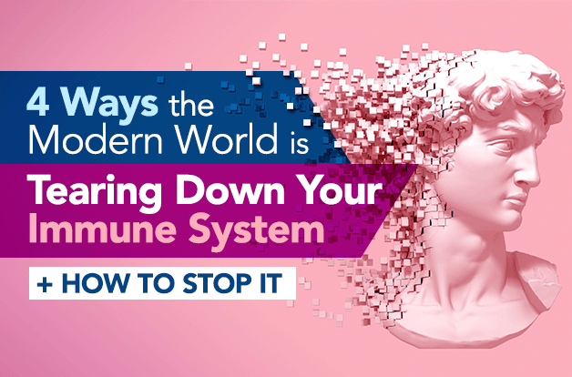 4 Ways the Modern World is Tearing Down Your Immune System + How to Stop It | Vital Plan