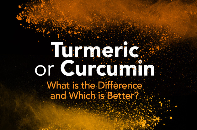 Turmeric or Curcumin: What is the Difference and Which is Better? | Vital Plan